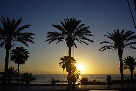 Visit Playa de las Americas Tenerife travel guide and tourism